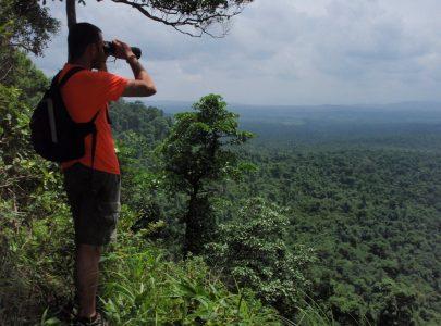 Kambodscha_Dschungel