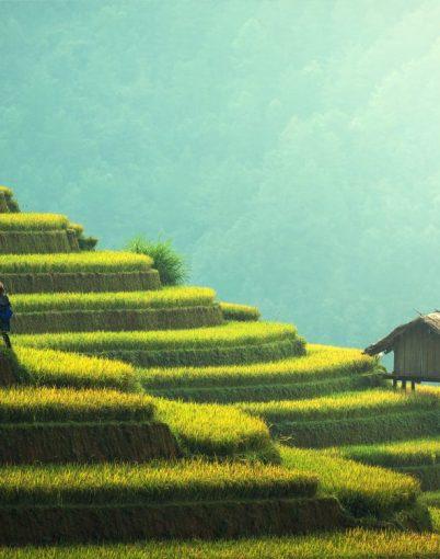 Vietnam-Sapa-Homescreen